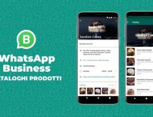 Il Catalogo Prodotti di Whatsapp Business